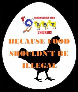 Oak Ridge Backyard Chickens (ORBY)