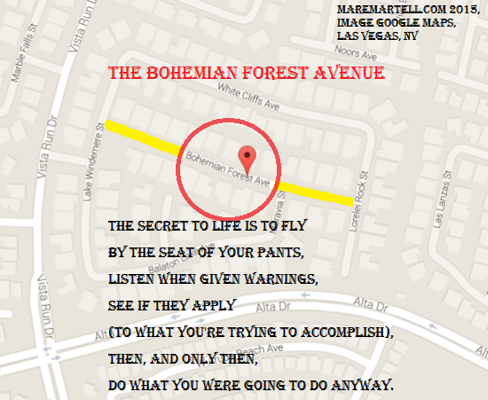Bohemian Forest Avenue is located in Las Vegas, NV. Google Maps made the image.