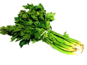 Savory stalker, celery