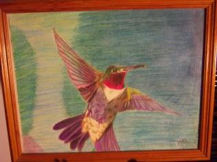 Hummingbird, colored pencil, paper SOLD