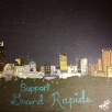 Support Grand Rapids, acrylic, board DONATED